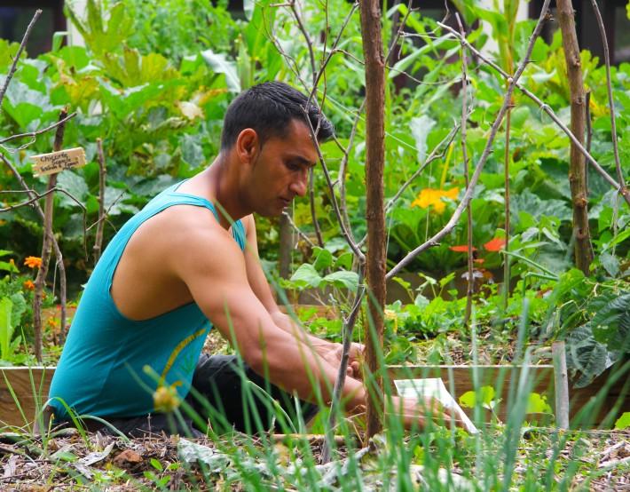 Environnement et insertion professionnelle: le chantier IAE de Bois de l'abbé
